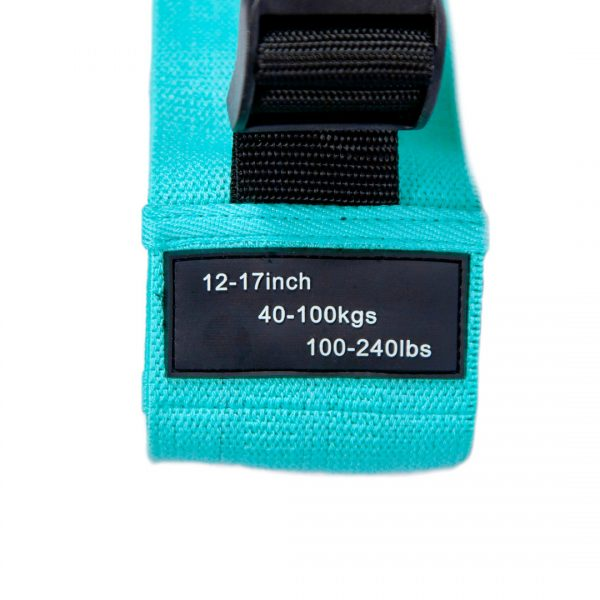 Booty Builder Adjustable Loop Band - Turquoise